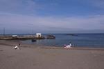 荒井浜海岸