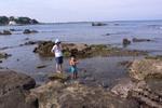 荒井浜で磯遊び