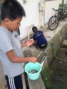 貝殻ひろい