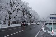 長野市内積雪